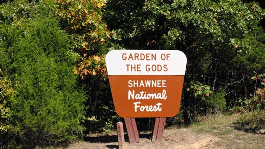 Garden of the Gods Forest Sign