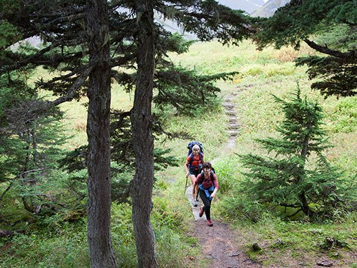 Hikers heading up a trail on the Kenai Peninsula.