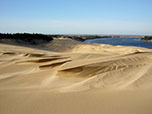 Oregon Dunes at the South Jetty