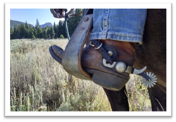 Photo of a boot with a spur on in a stirrup on a horse.