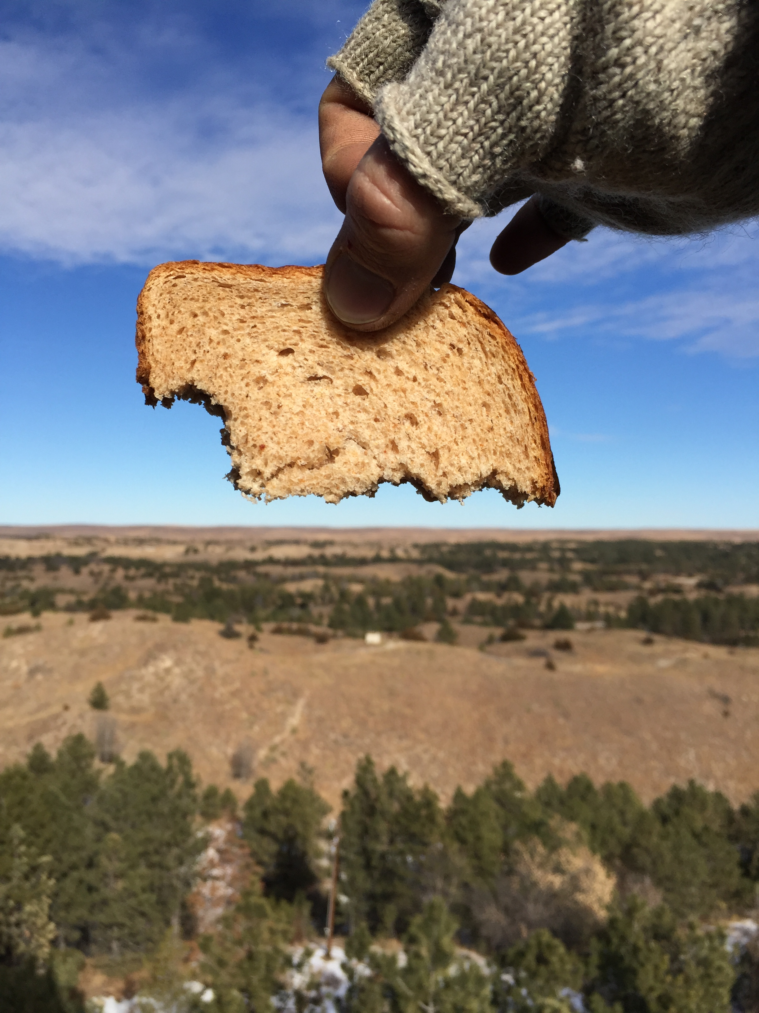 Someone is holding a piece of bread shaped like Nebraska from the Scott Lookout Tower