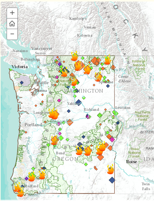 Map showing areas where fires burned 2015
