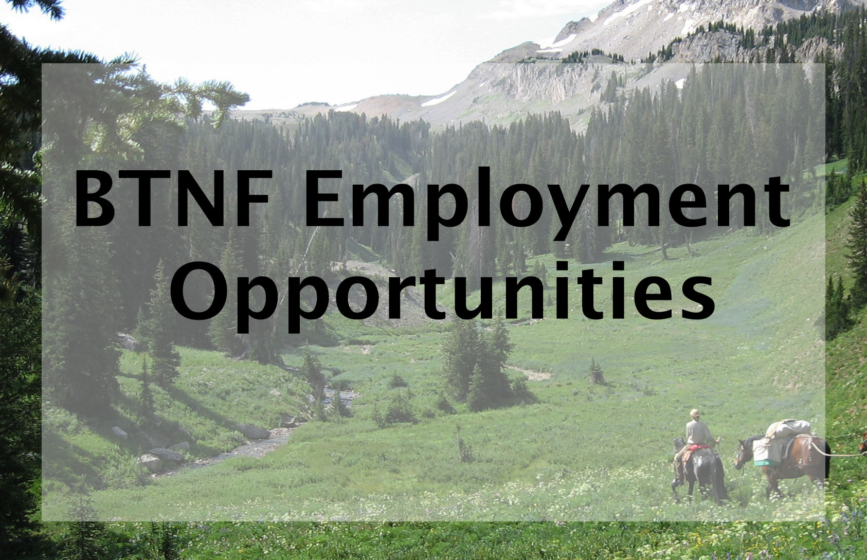 Click for employment opportunities on the Bridger-Teton NF