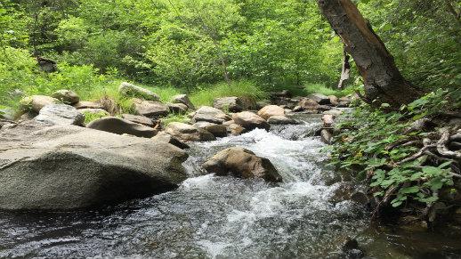 Riverside Day Use North Fork of Tuolumne