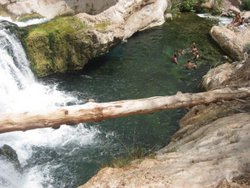 Swimmers enjoying the warm waters of Fossil Creek
