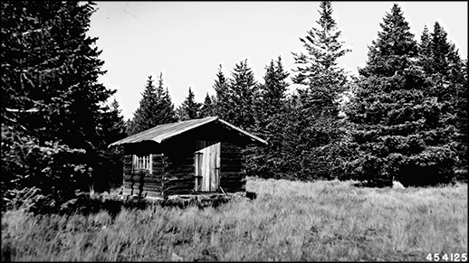 Historic black & white photo of Kendrick Peak Lookout Cabin