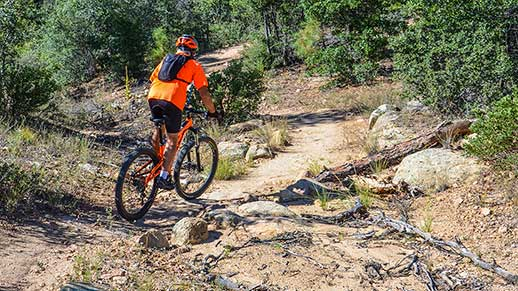 Mountain biker on Thumb Butte trail