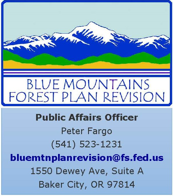 This graphic shows contact information for the public affairs officer for the Forest Plan Revision