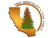 Tree Mortality Task Force