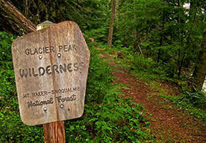 Glacier Peak Wilderness sign on the Darrington Ranger District. Photo by Gary Paull, US Forest Service.