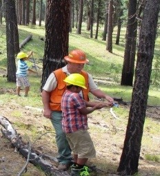 Photo of an employee instructing a student while working on a tree.