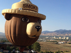 Photo of the Smokey Bear Hot Air Balloon up in the sky.