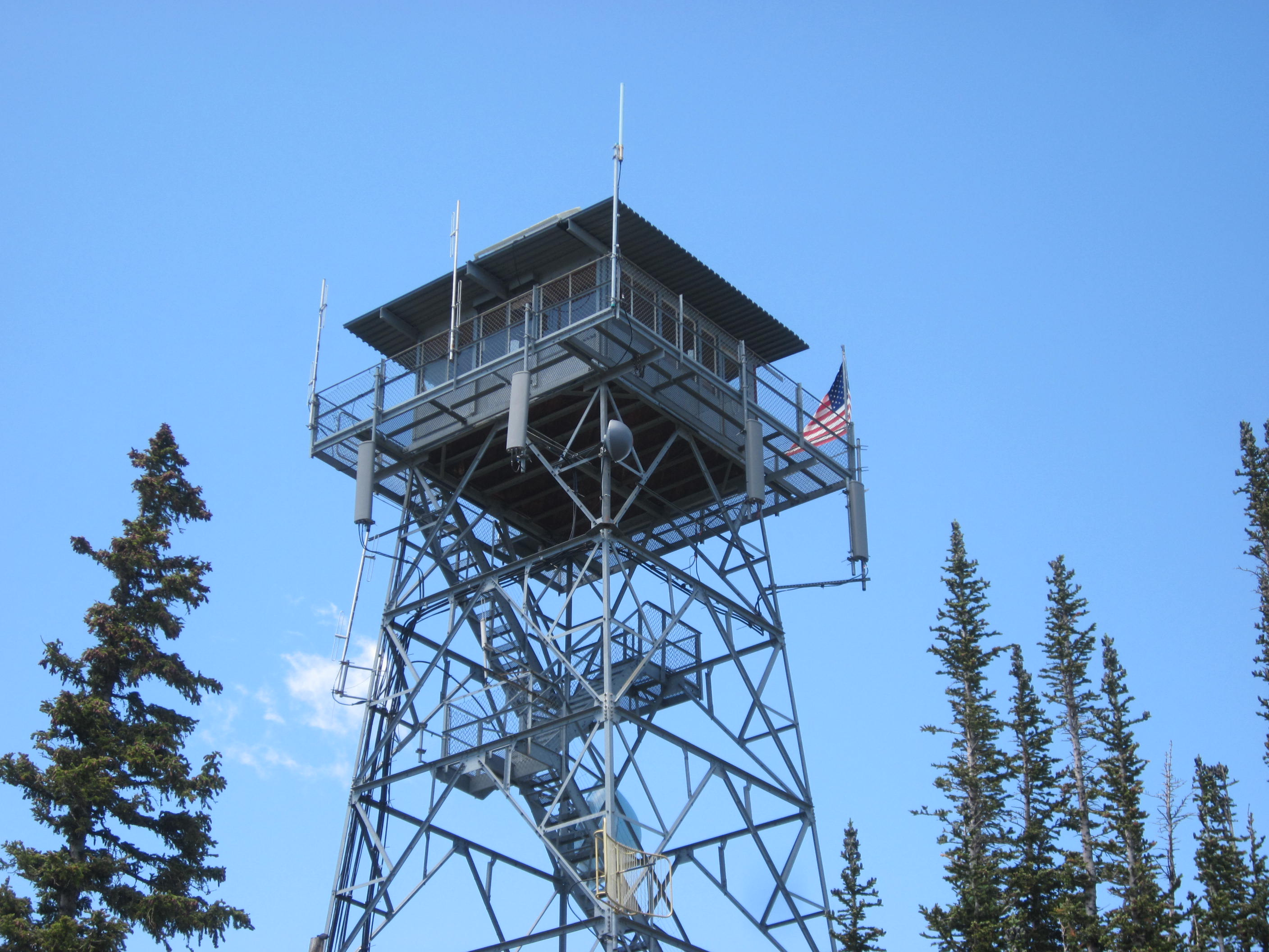 Gray metal framed lookout tower against a blue sky with pine trees on either side.