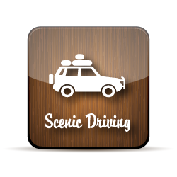 wooden button for scenic driving