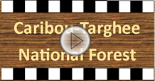 Caribou-Targhee National Forest with play button