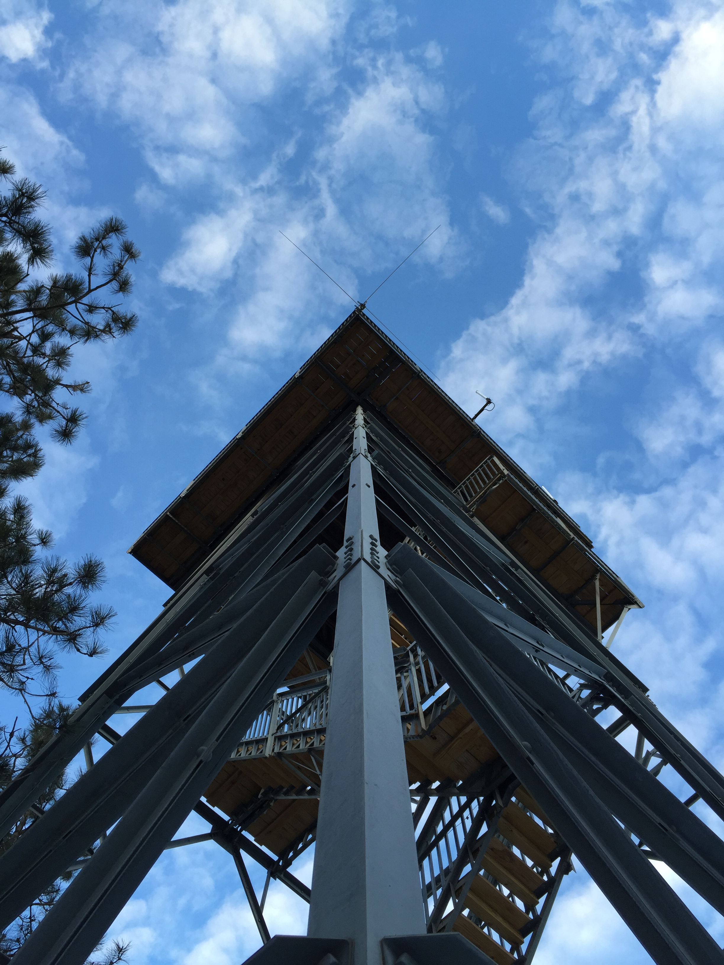 A view looking up the Scott Lookout Tower.