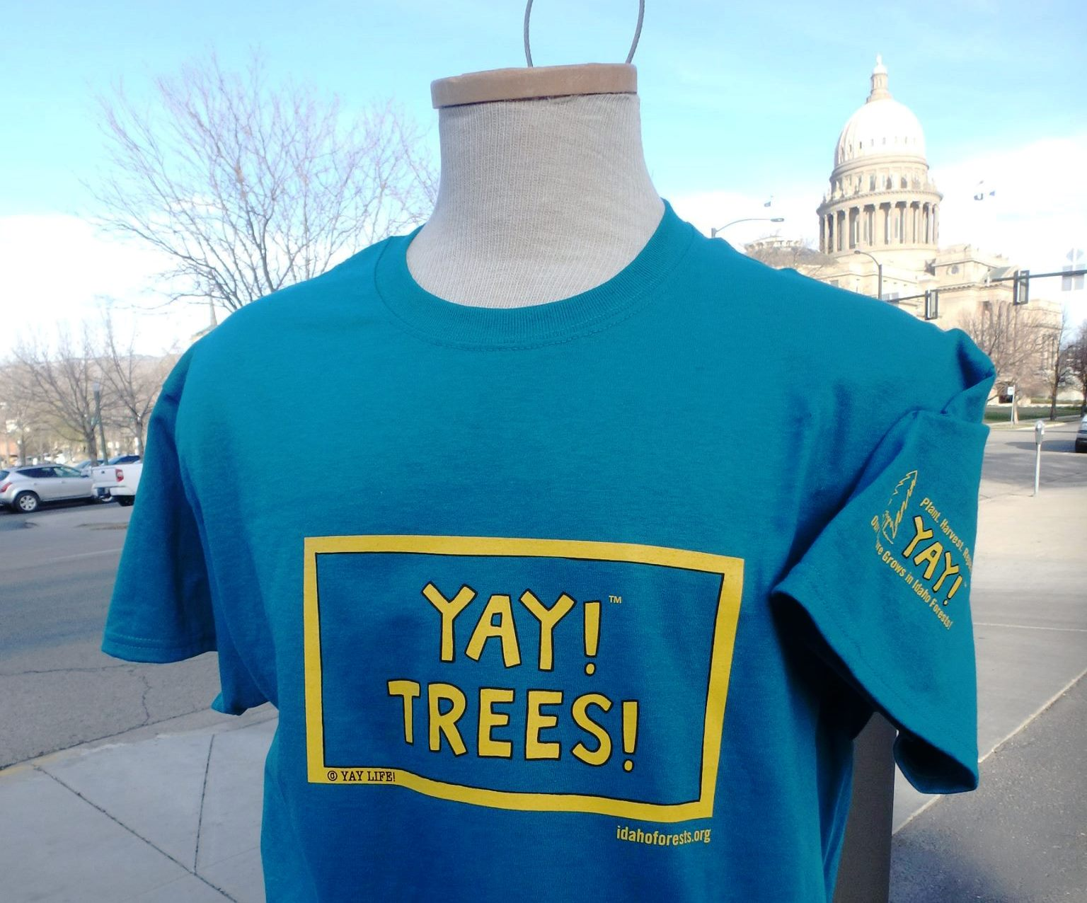 A blue t-shirt with writing Yay! Trees!