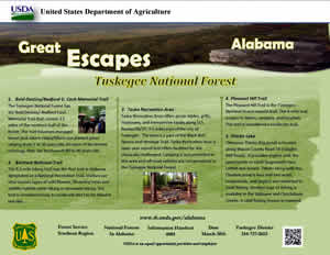 Great Escapes Tuskegee National Forest