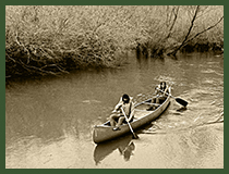 A couple paddling a canoe on the river in the national forest.