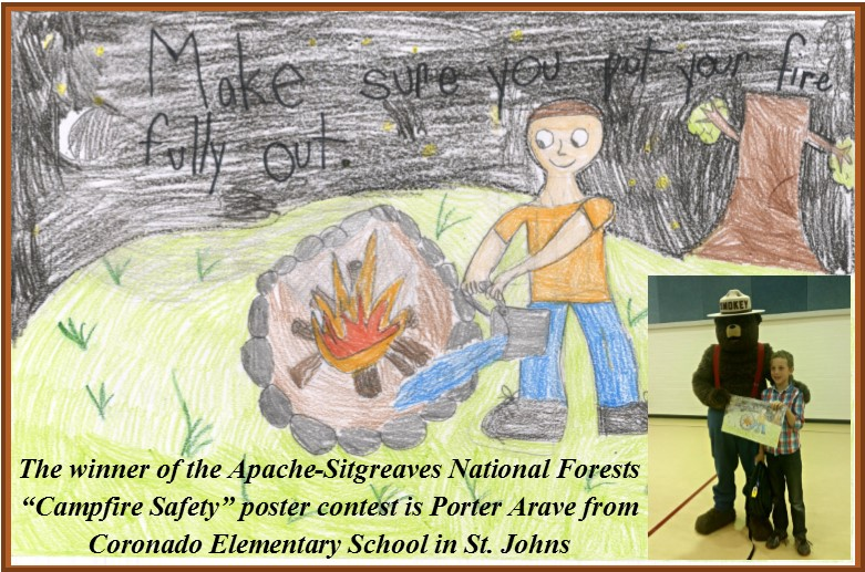 Campfire Safety Poster Contest