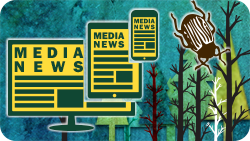 The words news media superimposed over an illusration of trees and sky