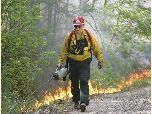 Growing season prescribed fire