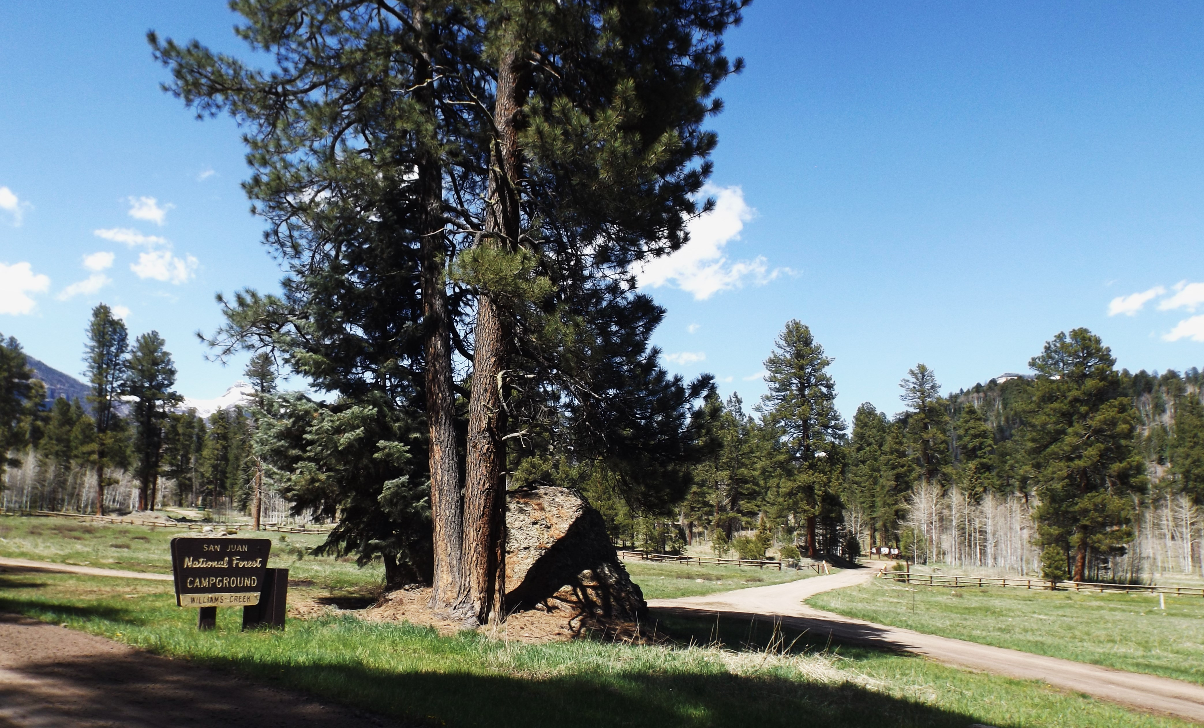 San Juan National Forest - Williams Creek Campground