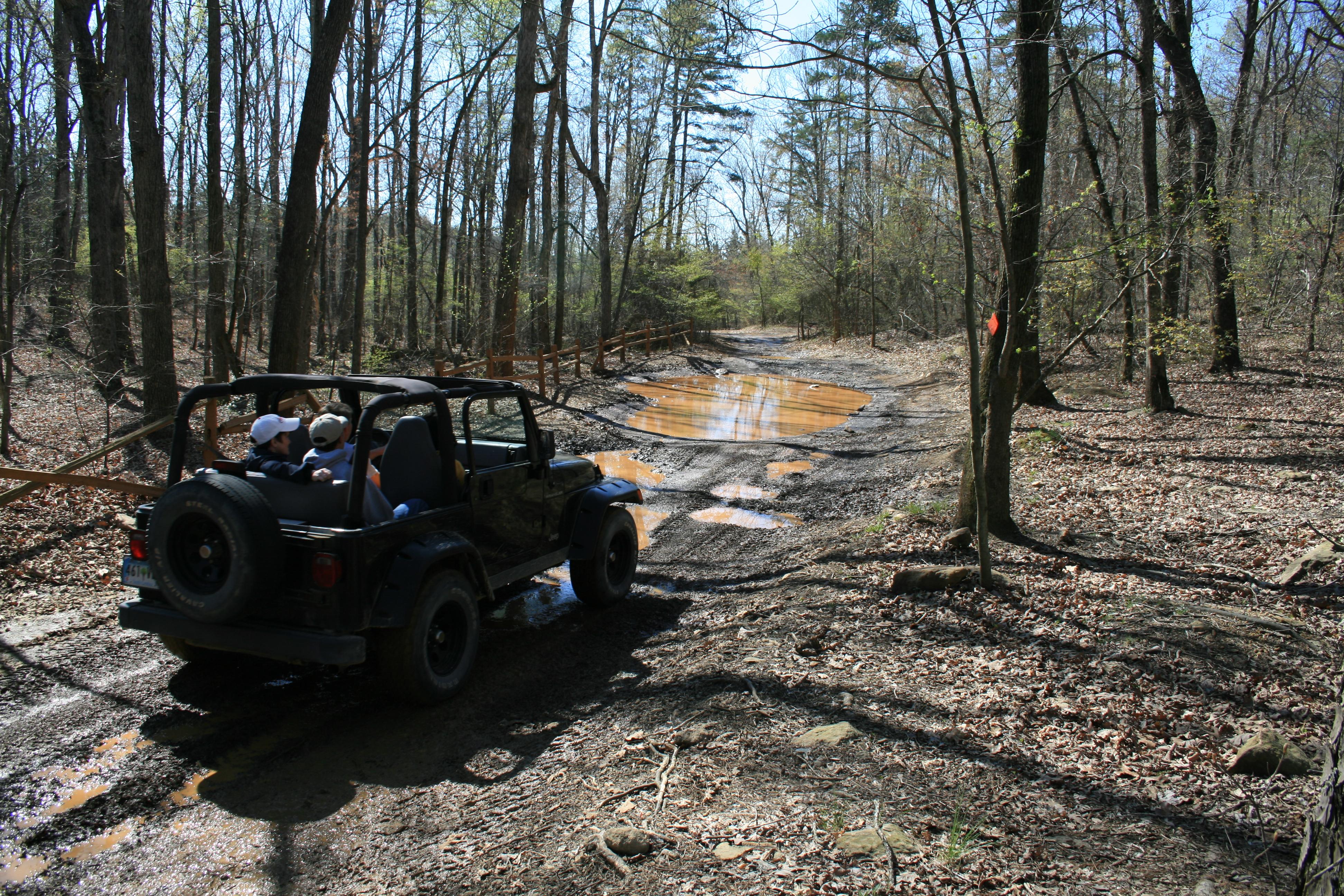 National Forests in North Carolina - Badin Lake OHV Trail
