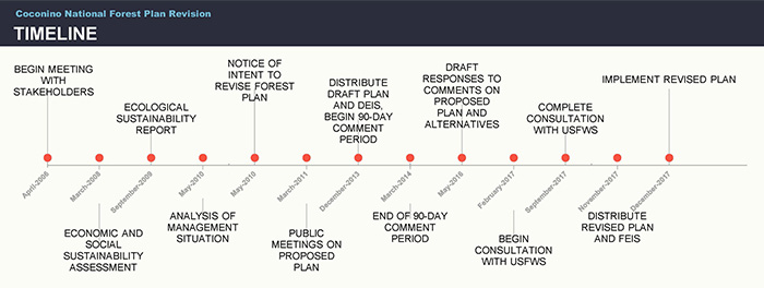 Timeline graph illustrating Forest Plan revision process