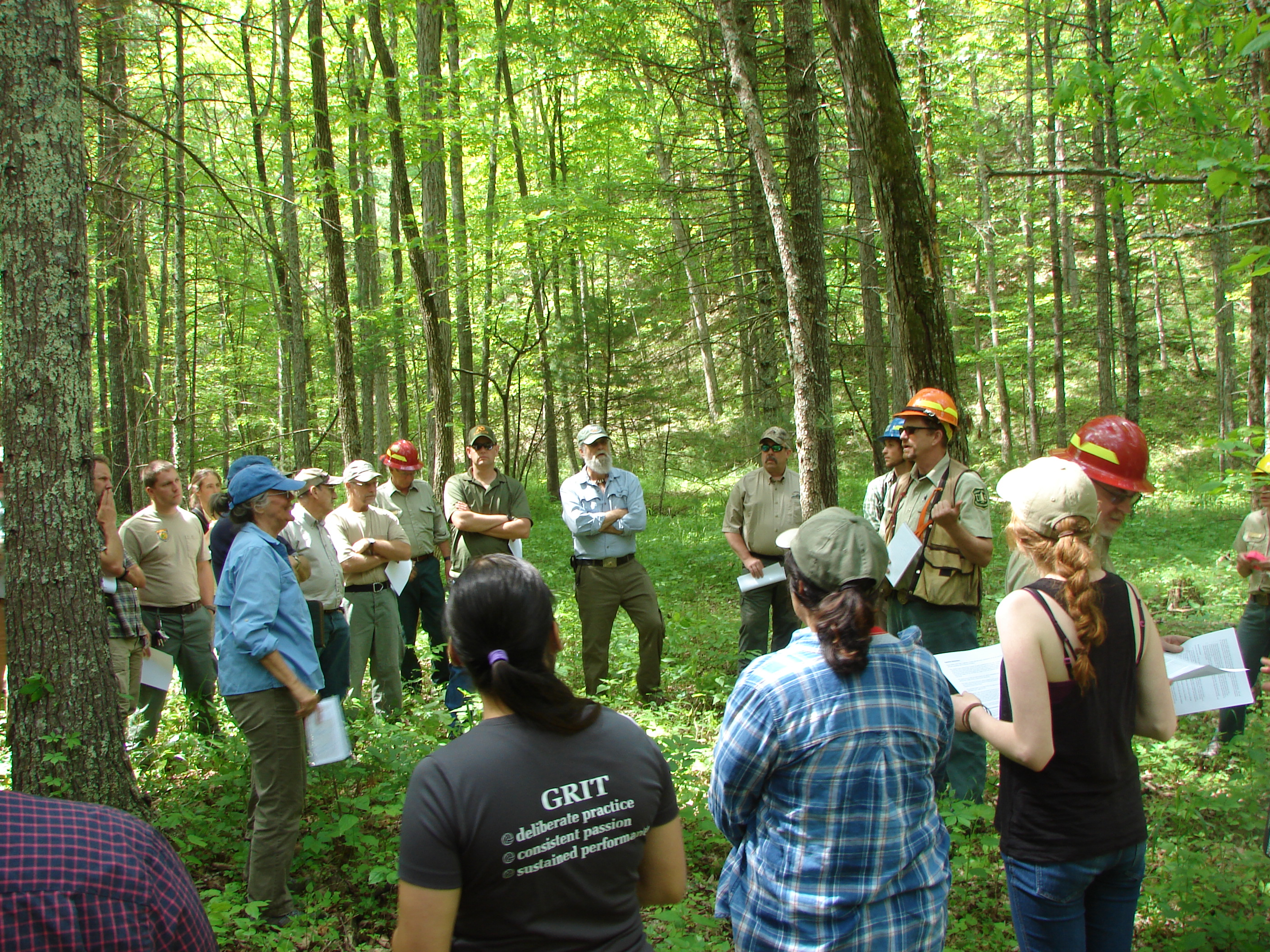 Several people stand in a wooded area listening to a forester speak