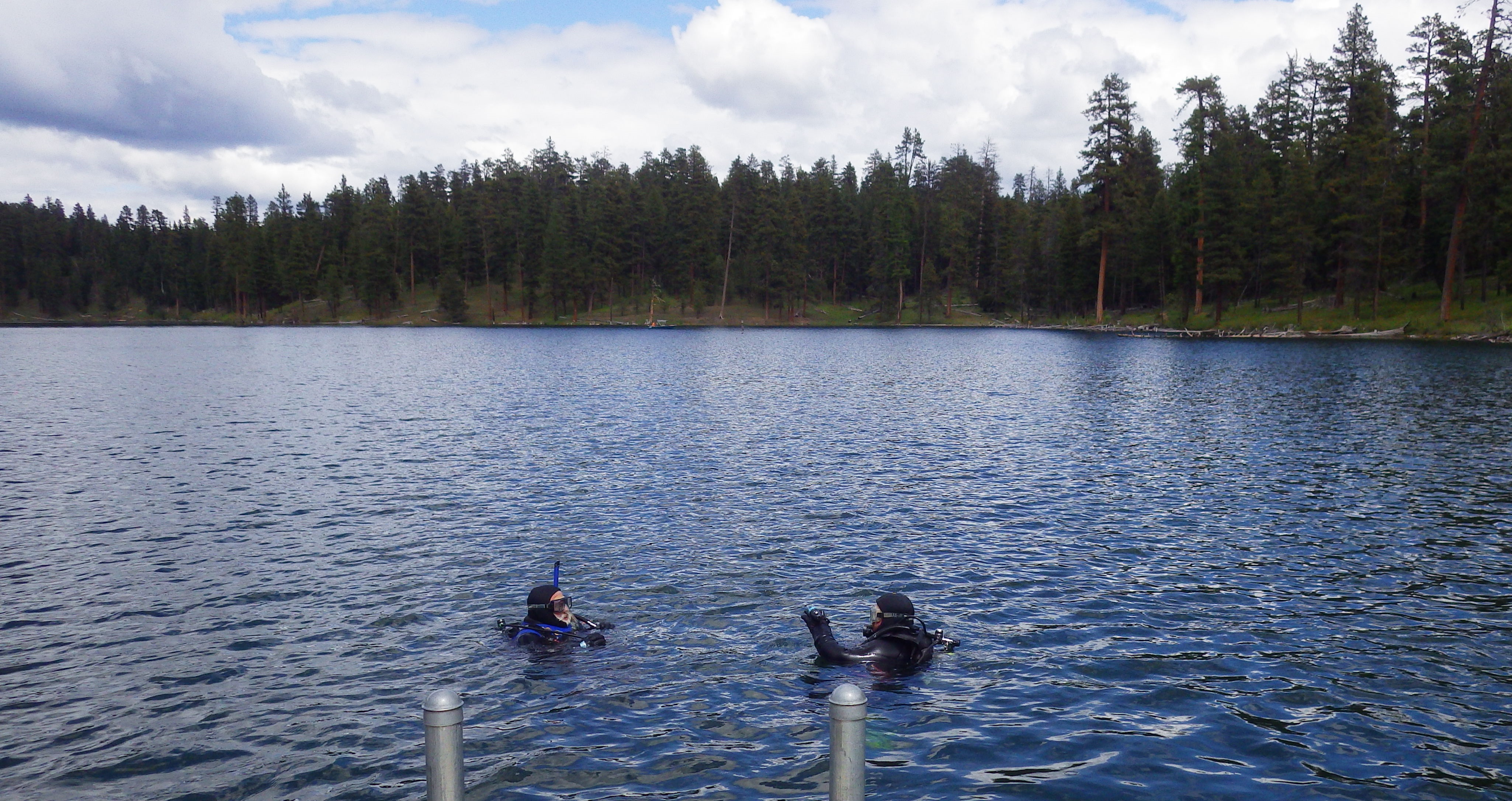 Professinal Divers inspect underwater forest in Magone Lake