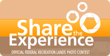Share the experience photo contest.