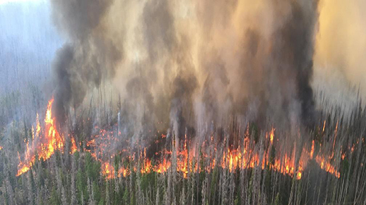 aerial perspective of fire burning on a tree covered mountain.