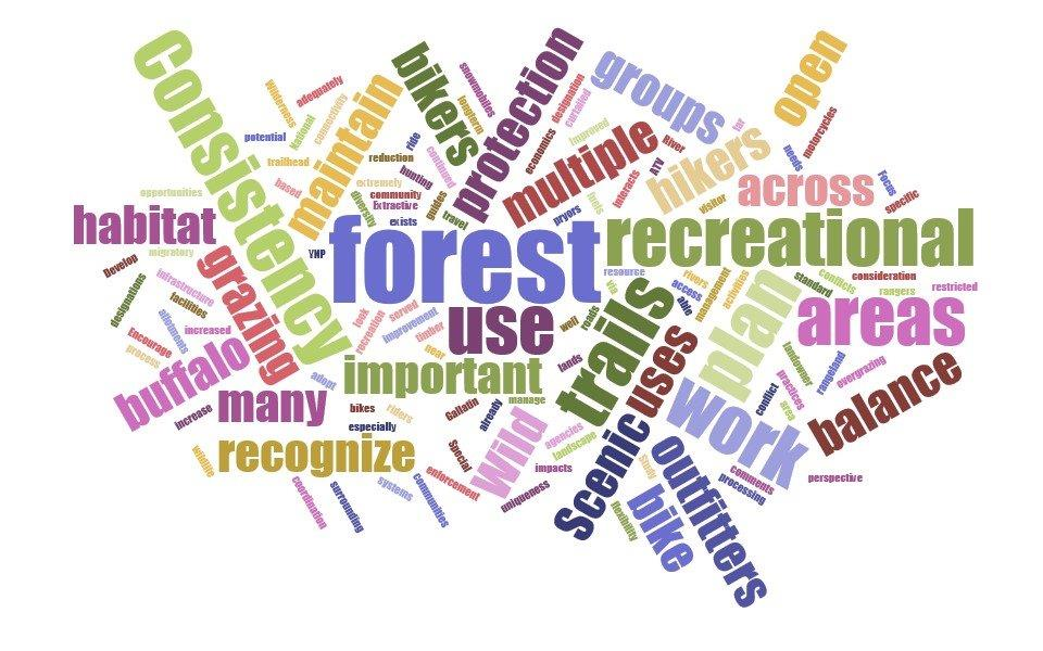 word cloud of what we heard