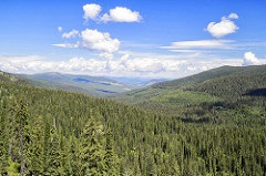 View from Canuck Pass on the Idaho Panhandle National Forests.jpg