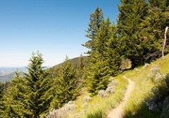 Pacific Northwest Trail, Colville National Forest