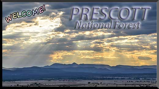 Welcome to Prescott National Forest