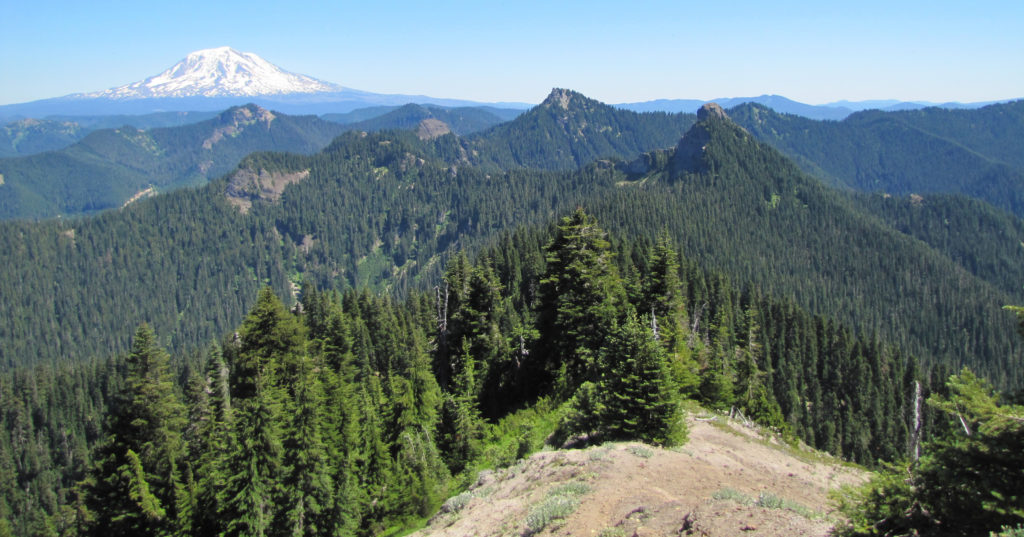 Spotlight: Badger Peak