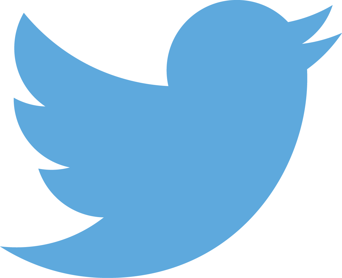 blue bird Twitter social media logo