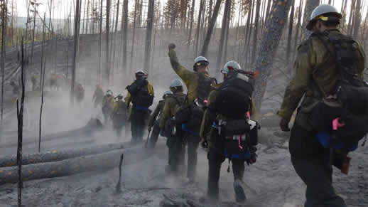 Photo of a group of firefighters walking single file through a burned area.