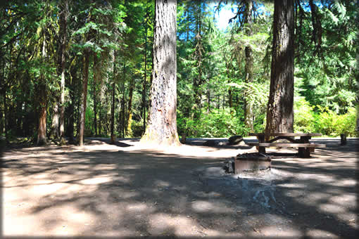 Coolwater Campground Site