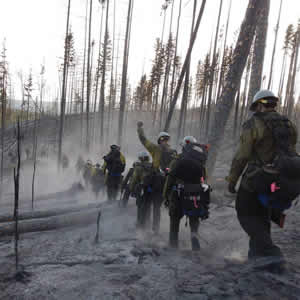 Photo of a trail crew walking single file through a burned area.