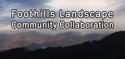 Foothills Landscape Community Collaboration
