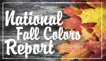 National Fall Colors Report