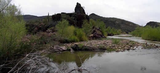 Cave Creek Ranger District