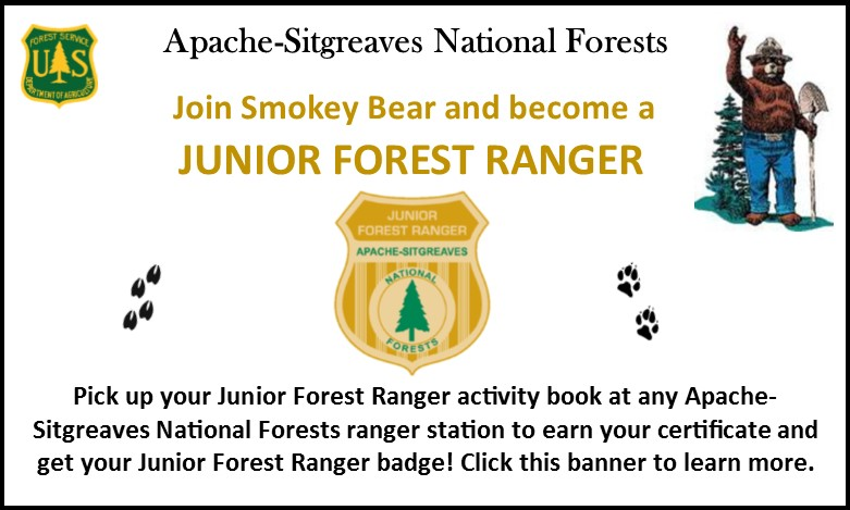 Junior Forest Ranger program for kids!