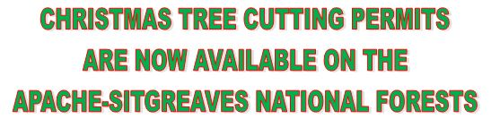 Christmas tree cutting permits are now on sale!