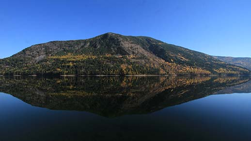 Sullivan Lake Fall I