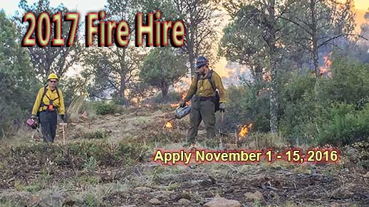 Apply for permanent fire jobs in Arizona and New Mexico from November 1 - 15, 2016