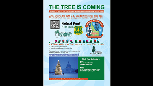 Image of the flyer for the Capitol Christms Tree Celebration.